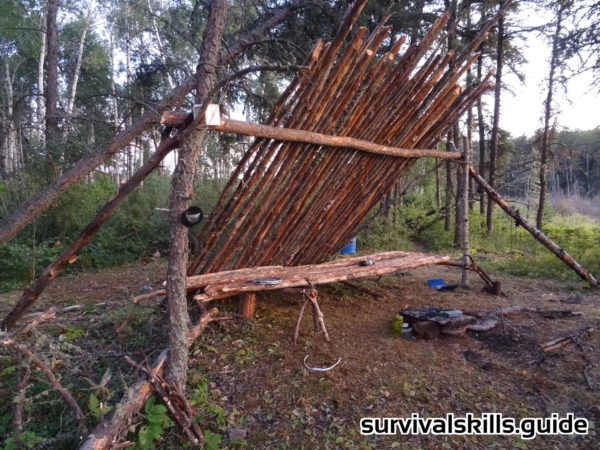 survival skills lean-to