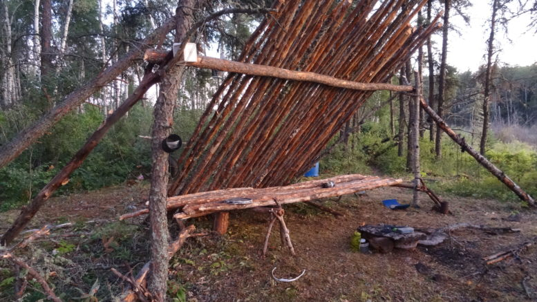 location long term wilderness survival shelter