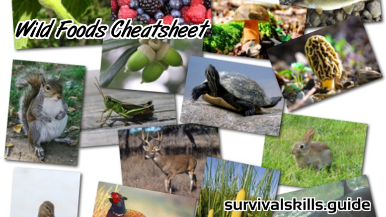 Ultimate Wild Game and Edibles Nutritional Cheatsheet