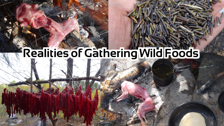 Realities of Gathering Wild Foods for Subsistence