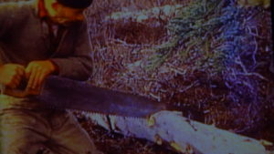 Dick Proenneke Tools cross cut tree saw