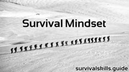 Survival Mindset and positive mental attitude
