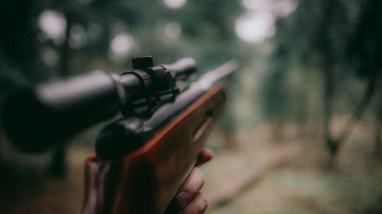 .22 caliber survival guns
