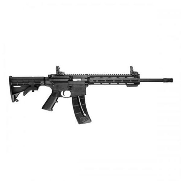 .22 survival guns